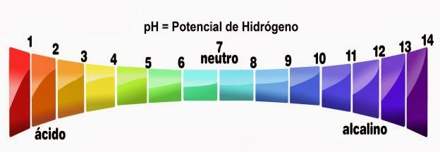 Resultado de imagem para escala de ph
